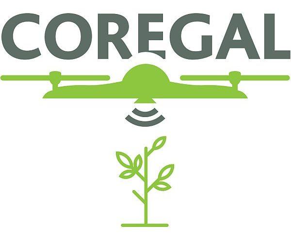 Webinar: Coregal, uma nova metodologia para medir biomassa com Drones