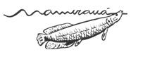 logo_mamiraua2